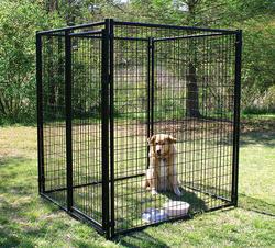 menards dog crates