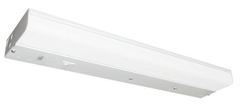 White 1 Light 25 Watt T8 Direct Wire