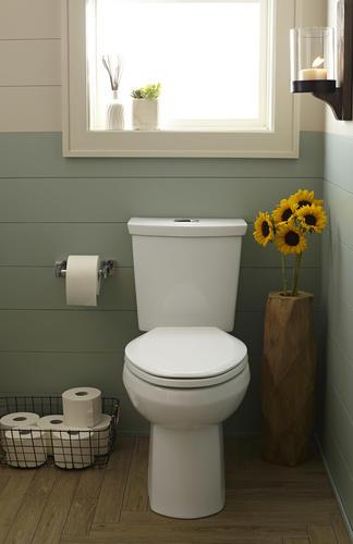 American Standard H2option Dual Flush 2 Piece Standard