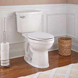 American Standard Titan 174 2 Piece Tall Elongated Toilet At