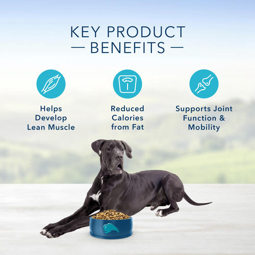 Blue™ Life Protection Formula® Large Breed Adult Healthy