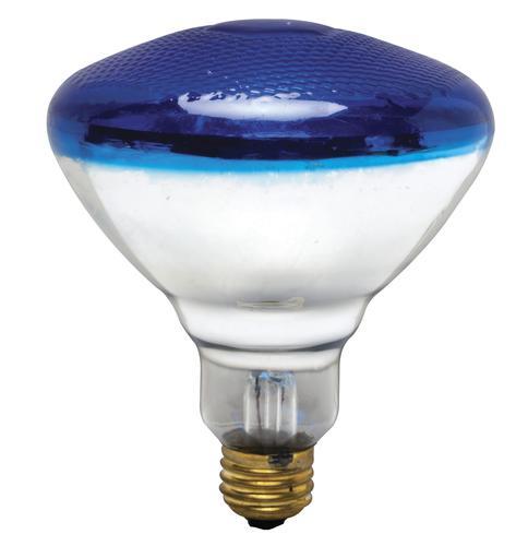 100 Watt Blue Light Bulb Gnubies Org