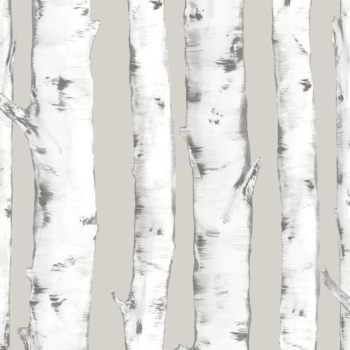 Inhome Downy Birch Peel Stick Wallpaper Roll At Menards