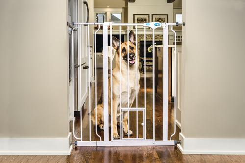 Carlson™ Extra Tall Pet Gate At Menards®