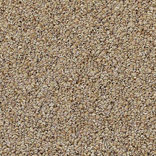 Menards Carpet Carpet Vidalondon