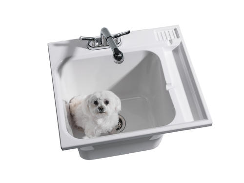 Cashel 174 Fully Loaded Drop In Abs Utility Sink Kit At Menards 174