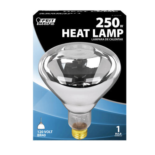 Feit 250 Watt Clear Heat Lamp At Menards 174