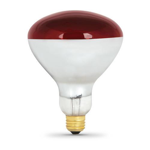Feit 250 Watt Red Heat Lamp At Menards 174
