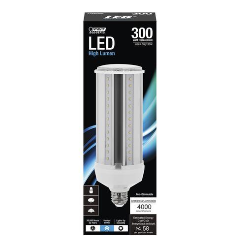 Feit Electric 300w Equivalent Daylight Led Light Bulb At Menards