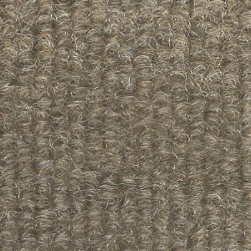 Foss® EcoFi Status Indoor/Outdoor Carpet 12 Ft. Wide At Menards®