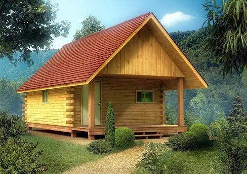 Ordinaire 16u0027 Cabin   Building Plans Only At Menards®