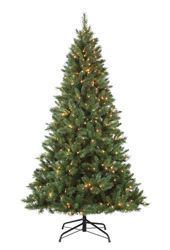 Enchanted Forest® 7.5' Prelit Fremont Artificial Christmas Tree at ...