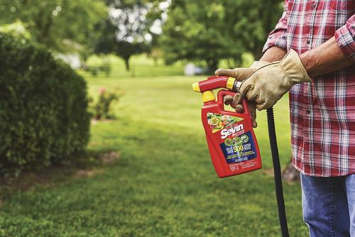 Sevin® Ready-To-Spray Insect Killer - 32 oz  at Menards®