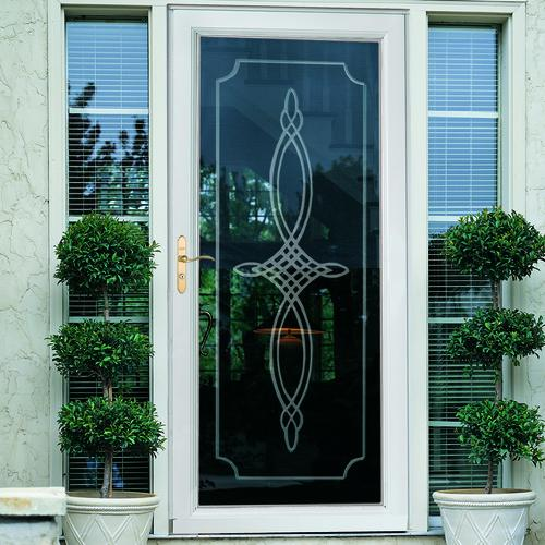 Larson Lakeview Fullview Elegant Bevel Glass Storm And Screen Door