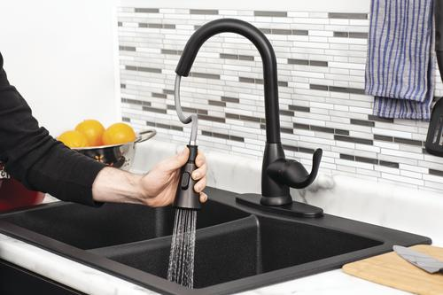 Tuscany® Sharena One-Handle Pull-Down Black Kitchen Faucet ...
