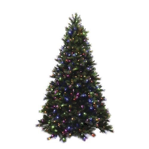 Christmas Trees Bristol: Enchanted Forest® 7.5' Prelit Natural Bristol Pine