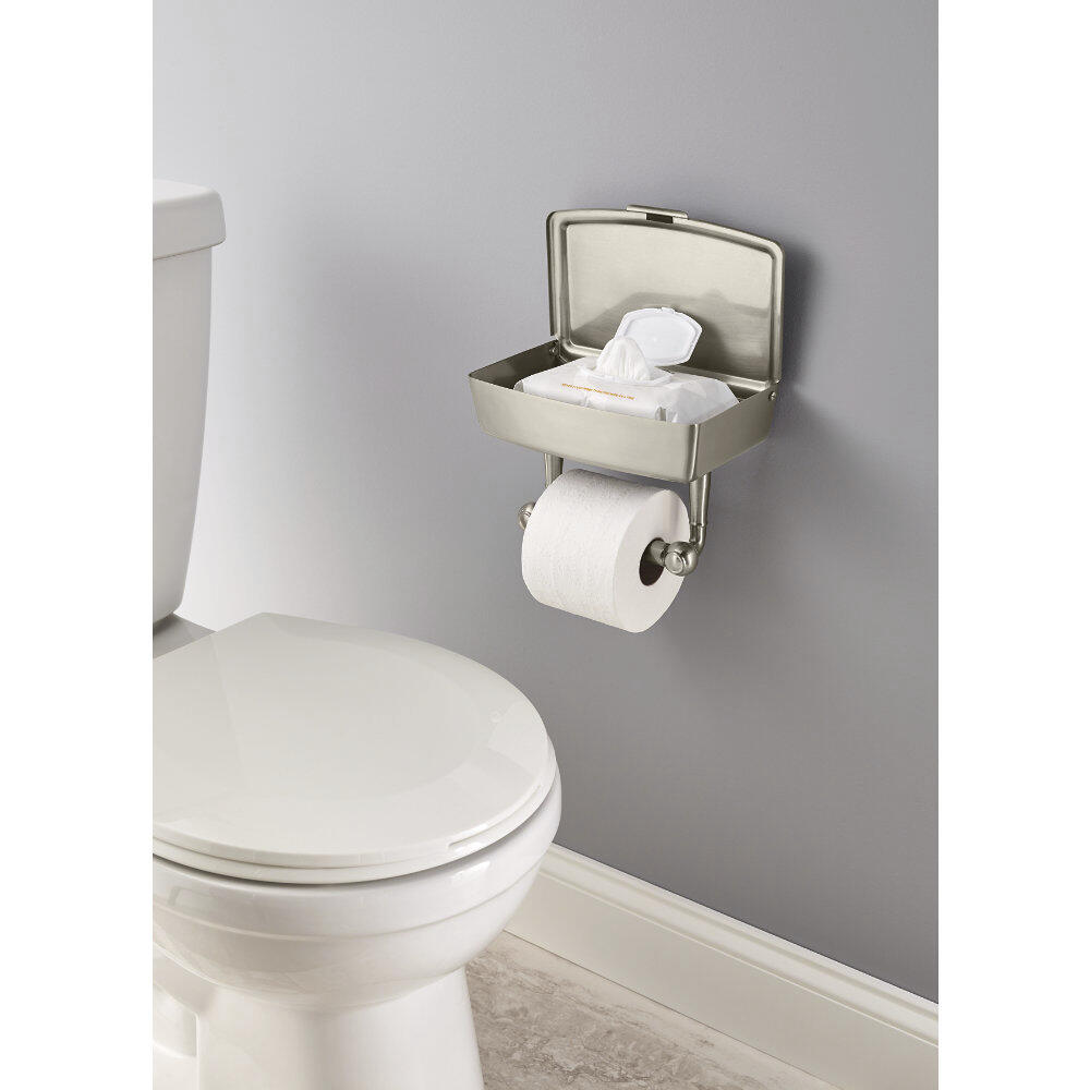 Delta Porter Toilet Paper Holder With Storage At Menards
