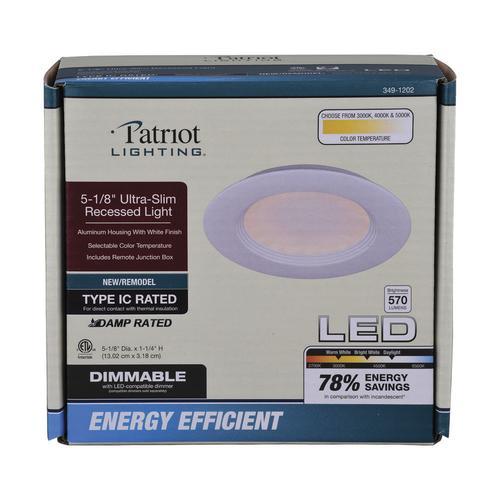 Patriot Lighting 4 60w Equivalent Adjule Color