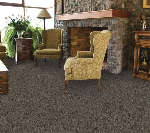 Marquis Industries Star Gazer Frieze Carpet 12 Ft Wide At