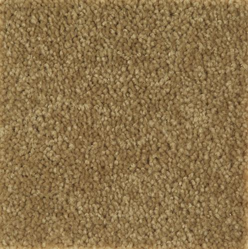 Mohawk Act One Plush Carpet 15 Ft Wide At Menards