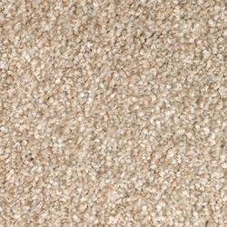 Mohawk True Appeal Plush Carpet 12 Ft Wide