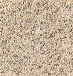 Frieze Carpet At Menards 174