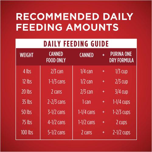 Purina One Smartblend Chicken Brown Rice Tender Cuts In Gravy Wet Dog Food 13 Oz At Menards