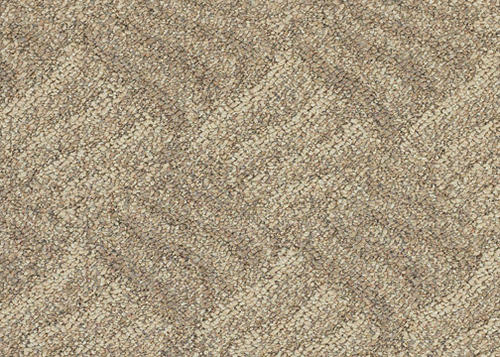 Image Result For Fayetteville Nc Carpet Cleaning