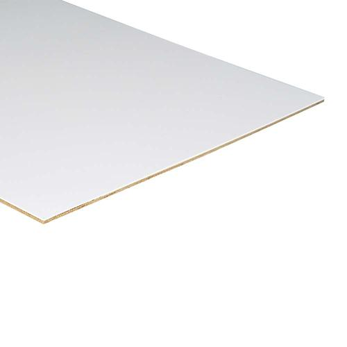 PLAS-TEX® Duro-Lam Lite 6/16 x 4 x 10 White Interior Wall