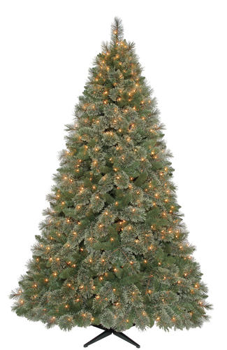 best website 5c138 4ed24 Enchanted Forest® 7.5' Prelit Fennimore Cashmere Pine ...