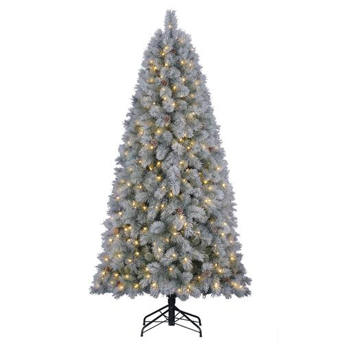 Menards Christmas Trees.Enchanted Forest 7 Prelit Led Theodore Fir Artificial