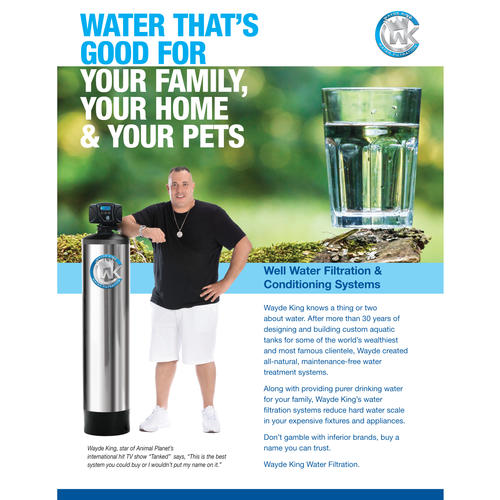 Natural water filter system Build Your Own Natural Health Solutions Wayde King Oxygen Injection Water Filtration System At Menards