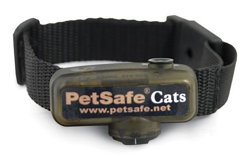 pet fence collar