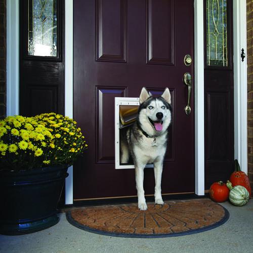 Petsafe Large White Extreme Weather Pet Door 10 12 X 16 25