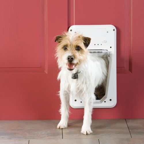 Petsafe Smartdoor Small White Electronic Pet Door 55 X 775 At