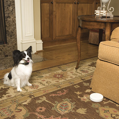 Elegant PetSafe Pawz Away Indoor Pet Barrier At Menards®