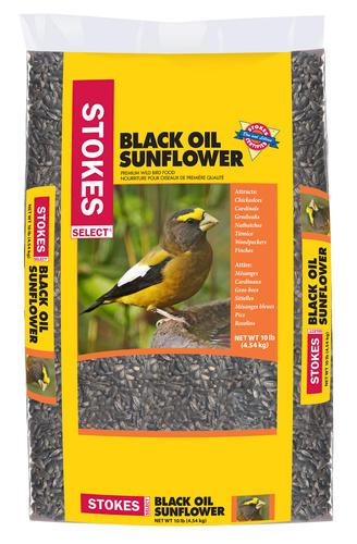 Stokes Select® Black Oil Sunflower Wild Bird Food - 10 lb