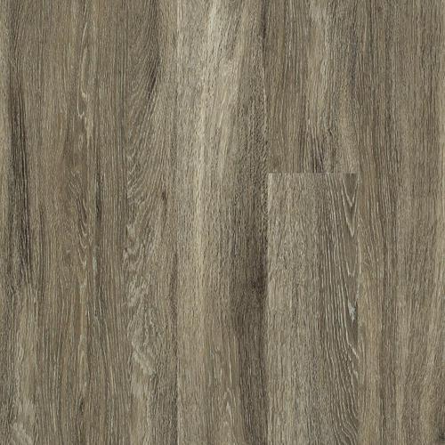 Shaw Laminate Flooring Sr Nose Carpet Vidalondon