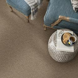 Shaw 174 Jules Frieze Carpet 12 Ft Wide At Menards 174