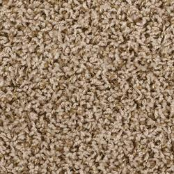Shaw 174 Jules Frieze Carpet 12 Ft Wide At Menards 174