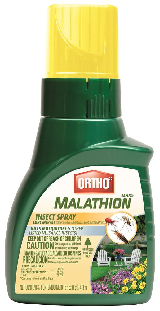 Ortho Max Concentrate Malathion Garden Insect Killer 16 Oz At Menards
