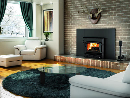 Century CW2900-I Wood Burning Insert (500 - 2,100 sq. ft.) at Menards®