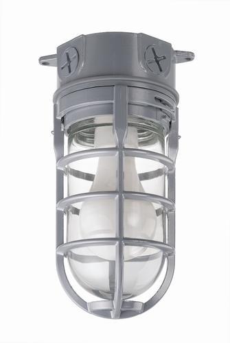 Carlon Ceiling Mount Metal Cage Light