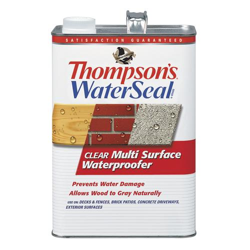 Thompson S Waterseal Clear Multi Surface Waterproofer At