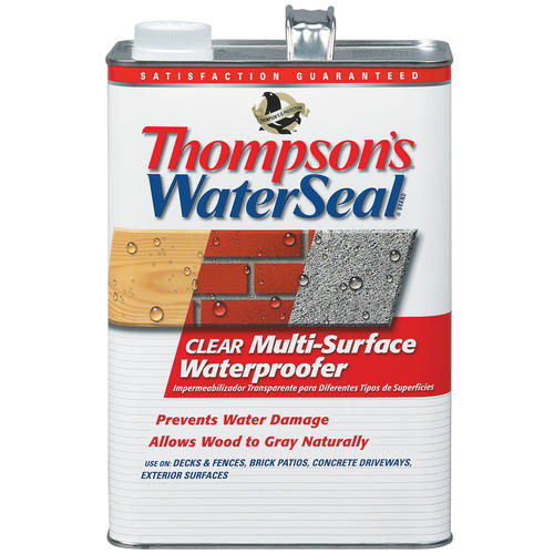 Thompson S Waterseal Clear Multi Surface Waterproofer 1 Gal At Menards