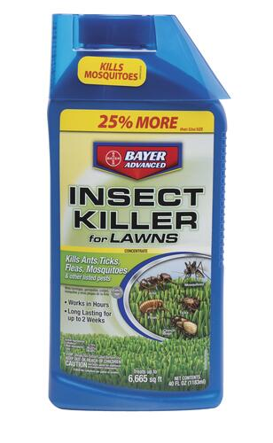 Bayer Advanced Concentrate Lawn Insect Killer 40 Oz At Menards
