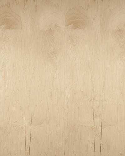 1 2 X 4 X 8 C2 Natural Maple Veneer Core Plywood At Menards