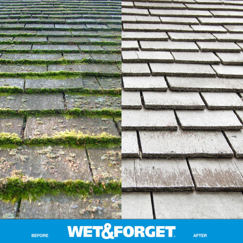 Wet Forget Moss Mold Mildew Algae Stain Remover At Menards