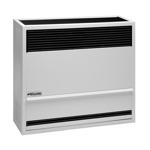 Williams 22 000 Btu Natural Gas Direct Vent Wall Heater At