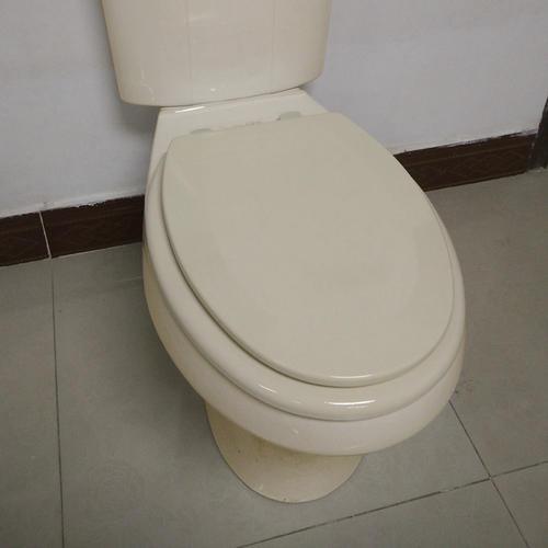 Astounding Bone Toilet Seat Svwilp Nl Machost Co Dining Chair Design Ideas Machostcouk